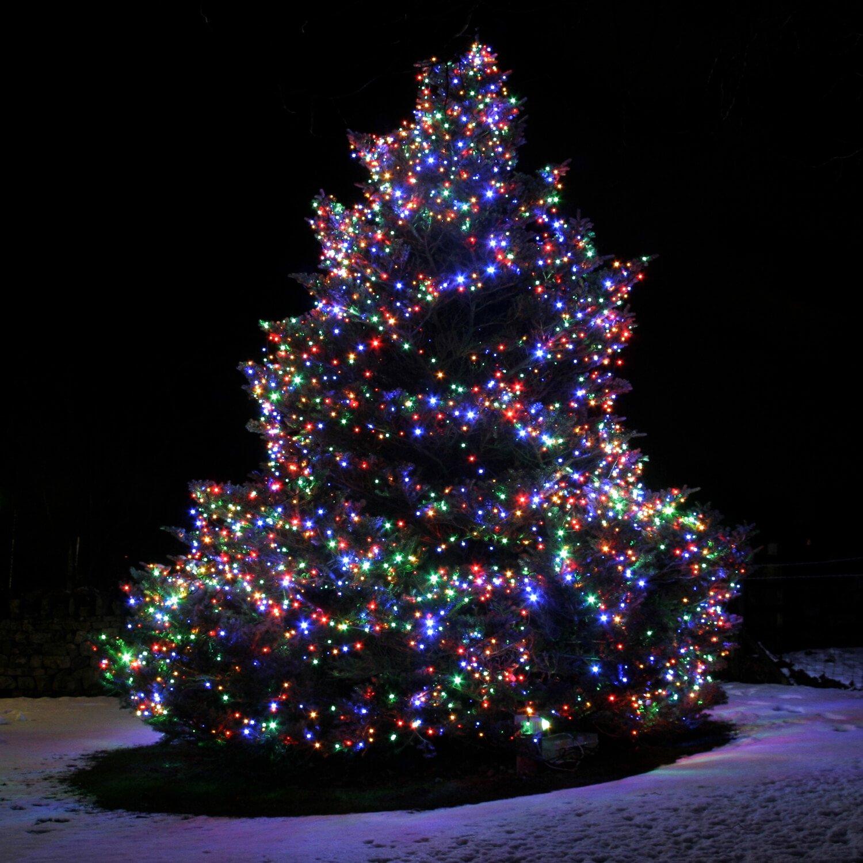 jack frost tree lighting